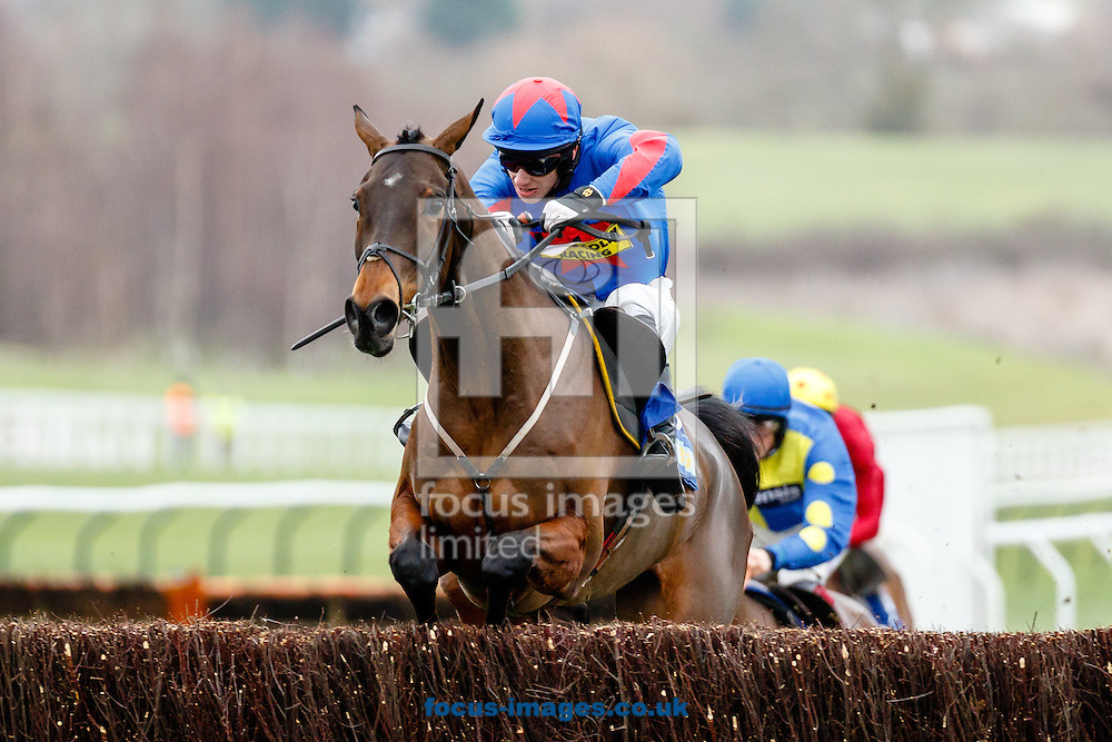 Jamie Bargary on Splash of Ginge (Blue/Red) wins the BetBright Best For Festival Betting Handicap Chase during the New Years Day meeting at Cheltenham Racecourse, Cheltenham.<br /> Jamie replaced Ryan Hatch who fell in the previous race.<br /> <br /> Picture by Mark Chappell/Focus Images Ltd +44 77927 63340<br /> 01/01/2015