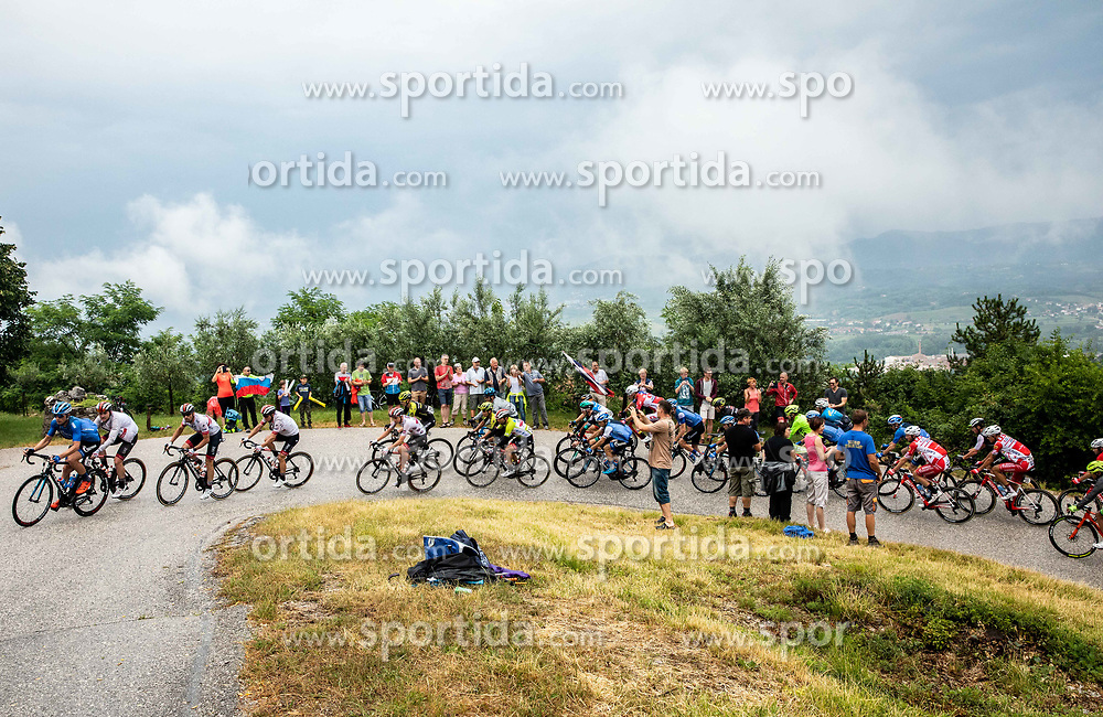 Peloton near Rence during 4th Stage of 26th Tour of Slovenia 2019 cycling race between Nova Gorica and Ajdovscina (153,9 km), on June 22, 2019 in Slovenia. Photo by Vid Ponikvar / Sportida
