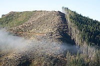 Clearcuts are devastating to salmon and steelhead habitat; depositing oxygen suffocating silt in the gravel beds where fish lay their eggs as well as contributing to warming river and stream temperatures. This unsustainable logging practice is rampant all along the Pacific Coast between California and Alaska.