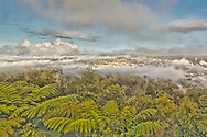 Fog rolls in to Whangarei
