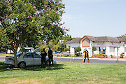 Milpitas Police investigate the remains of from a fatal accident, which occurred at 6:50 AM on Aug. 3, 2012, at the Jacklin Blvd. and Hamilton Ave. intersection, across from Nob Hill Foods...The driver of the Mitsubishi Galant was transported to San Jose Regional Medical Center, where he was pronounced dead, according to Milpitas Police Department Sgt. Gene Smith. The driver of the Volvo XC90 did not require medical attention, he added. ..The victim's name and age has not been released. Police would not speculate on the cause of the accident. The coupe's driver side door was completely crushed, and had been pushed into a tree after the impact.  Photo by Stan Olszewski/SOSKIphoto.