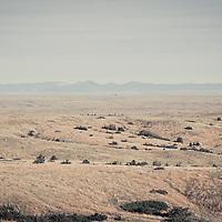 wild prairie of eastern montana