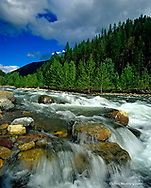 Cascading water on Bear Creek in the Flathead National Forest of Montana