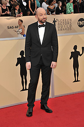 Paul Scheer arrives at the 24th annual Screen Actors Guild Awards at The Shrine Exposition Center on January 21, 2018 in Los Angeles, California. <br />