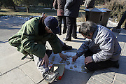 China, Beijing, The Forbidden City Temple of Heaven park, xiangqi (Chinese Chess) players