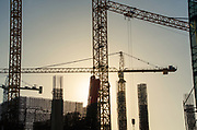 Multiple Construction Cranes Silhouette at Sunset