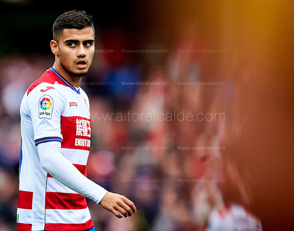 GRANADA, SPAIN - DECEMBER 03:  Andreas Pereira of Granada CF looks on during the La Liga match between Granada CF and Sevilla FC at Estadio Nuevos Los Carmenes on December 03, 2016 in Granada, Spain.  (Photo by Aitor Alcalde Colomer/Getty Images)