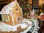 Ginger bread house meyrick 2016