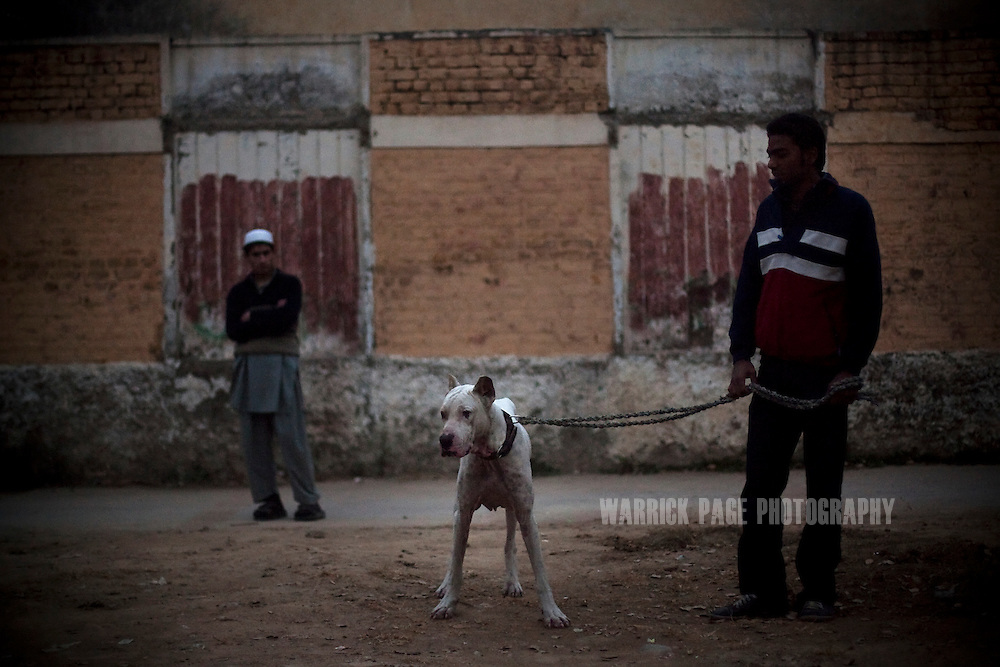 A Pakistan man walks his dog in the Christian colony, on 20 January, 2011, in Islamabad, Pakistan.Pakistan's Christian communities are feeling increasingly marginalized, as the country grows more divided over Pakistan's controversial blasphemy law. In early 2011, two politicians were assassinated for supporting the amendment of the law that carries the death penalty and, according to rights activists, it is often exploited by Islamist extremists or those harbouring personal grudges. (Photo by Warrick Page)