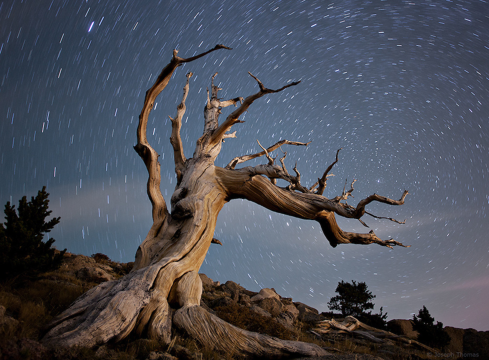 The rising moon illuminates the remnants of an ancient bristlecone pine tree. I had photographed this well-hidden tree at a secret location a few years earlier and came back this night get a star shot. Arriving late with a vague recollection of its whereabouts, I wandered around the mountainside in the darkness for about an hour before finally relocating my old friend. My goal was to juxtapose the twisted limbs that were gradually sculpted by winds over countless centuries against ephemeral clouds that were shaped by the same force in mere seconds. All this plays out before the seemingly unchanging cosmos, giving a sense of time moving on many scales.