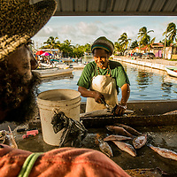 Lifestyle in Belice city around the fish market.