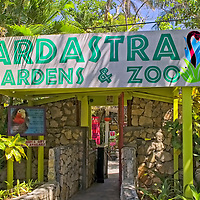 ARDASTRA GARDENS - TRAVEL STOCK PHOTOS OF THE BAHAMAS