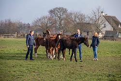 Stal van d'Abelendreef - Moerbeke Waas 2020 © Hippo Foto - Dirk Caremans<br /> 23/01/2020