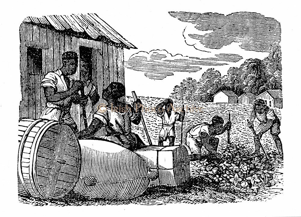 Slaves on a cotton plantation in Georgia, USA. Wood engraving c1830.