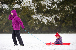 © Licensed to London News Pictures. 09/11/2016. Leeds UK. Picture shows Margaret Davies pulling her one year old Granddaughter through the snow on her sledge at  Temple Newsam park in Leeds after heavy snowfall this morning. Photo credit: Andrew McCaren/LNP