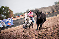 Sport and Equine Photography by Photographer Ioan Said, capturing the sport of campdrafting.