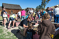 Panning for gold at Bannack Days festival at Bannack State Park, Montana, USA