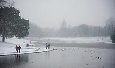 130118 Liverpool Sefton Park Snow