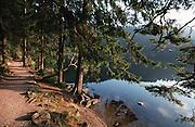 Deutschland, Germany,Baden-Wuerttemberg.Schwarzwald.Mummelsee, Wanderweg am Ufer.Mummel Lake, path at lake...