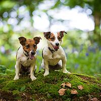 Molly and Daisy