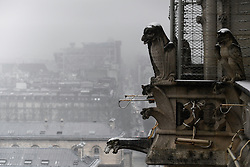 February 6, 2018 - view of Paris in the snow from Notre Dame Cathedral in Paris, France, on 6 February 2018. (Credit Image: © Julien Mattia/NurPhoto via ZUMA Press)