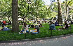People in a New York City Park ignoring the lawn closed sign on a Spring day
