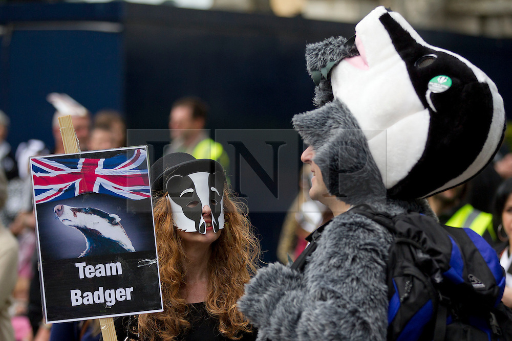 © Licensed to London News Pictures. 01/06/2013. London, UK. Protesters are seen in London today (01/06/2013) as they take part in a demonstration against plans by the British government to cull the badger population in the United Kingdom. Photo credit: Matt Cetti-Roberts/LNP