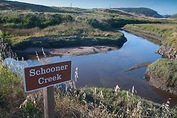 Schooner Creek at Drake's Estero, Pt. Reyes, Marin County, California, US
