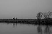 Comunidade de Santa Isabel no município Arroio Grande no Rio Grande do Sul. Canal São Gonçalo na área da Lagoa Formosa, Granja 4 irmãos e Sangradouro, pertencentes a bacia Patos Mirim .