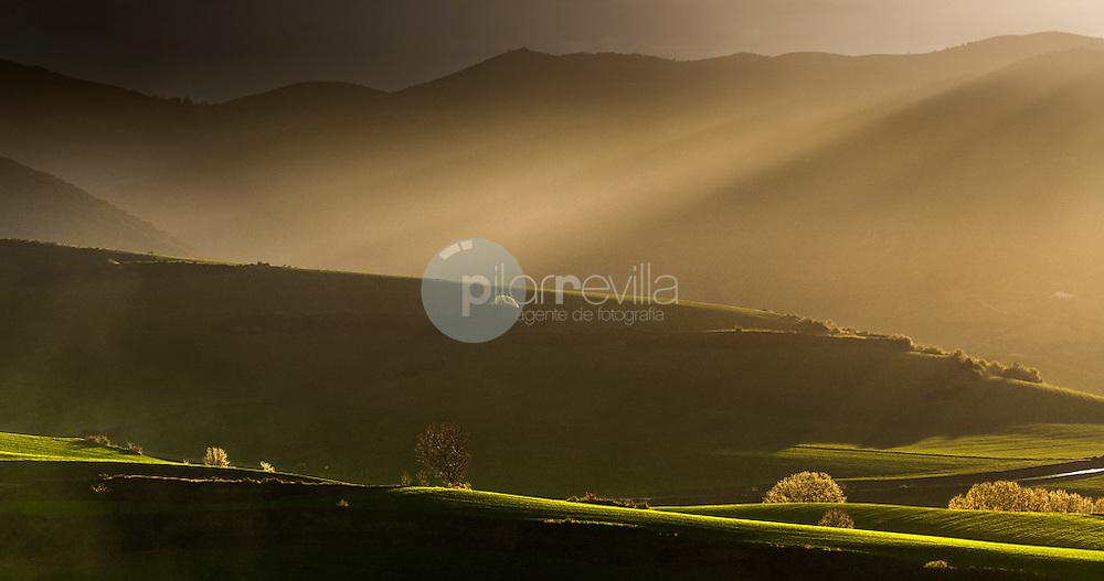 Campo de cereales. La Rioja ©Daniel Acevedo / PILAR REVILLA