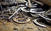 Discarded horseshoes and nails lie idly with a pair of pliers.