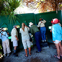 LITTLE ST. SIMONS ISLAND, FL -- October 1, 2010 -- Vacationers peer though a blind for birds on Little St. Simons Island on Friday, October 1, 2010.   The 10,000 acres of marshland, beaches, and forests are a refuge for wildlife and vacationers alike with only 32 guests permitted a night.  (Chip Litherland for Bay Magazine)