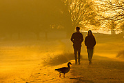 UNITED KINGDOM, London: 26 February 2019. Early morning walkers make their way through Richmond Park this morning during sunrise on what is set to be the warmest day in February since records began. Temperatures are set to reach up to 20 degrees Celsius in the capital today. Rick Findler / Story Picture Agency