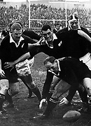 Wilson Whineray scrambles to pick up a loose ball during the second test of the 1965 series between NZ and SA at Dunedin. Others, from left, are: Bruce McLeod, Ken Gray and C.P. Goosen.<br /> Photosport