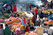 Zumbagua has a vegetable market big enough to attract a few tourists. The town even has a small hotel or two. Zumbagua is midway between the high Andes and the coastal lowlands; its market, supplied by both climatic zones, creates a kind of ecological collision, with purple mountain potatoes and bumpy red oca tubers vying for space with tropical pineapples and blocks of coarse brown sugar. Hungry Planet: What the World Eats (p. 112).