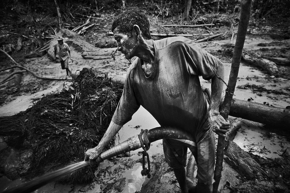 Brazil, Amazonas, Eldorado do Juma.<br /> <br /> Grota Ze da bolsa, garimpeiros.<br /> Eldorado do Juma est maintenant un bidonville de plastique noir et de misere croissante sur la rive du fleuve, qui attire les prospecteurs. Des centaines d'hommes y creusent la boue sur leurs petites parcelles delimitees par des branchages et des ficelles. A la fin du jour, les plus chanceux auront trouve quelques poussieres d'or, vendues ensuite 40 reals le gramme (14,5 euros) a Apui, 65km au nord. Les plus riches du coin sont ceux et celles qui cuisinent, nettoient ou divertissent les mineurs.<br /> Il y a trop de prospecteurs pour la teneur du filon, du coup les garimpeiros s&rsquo;eparpillent sur une surface qui couvre plus de 40 hectares. Tous les mineurs dependent de l'autorisation d'une cooperative de proprietaires pour travailler. Ces proprietaires ne possedent pourtant pas de titre foncier pour justifier leur etat, ils sont simplement arriver les premiers sur les parcelles : c'est la loi de l'or.<br /> Quatre mois apres le debut de cette ruee, la plupart du minerai qui peut etre extrait manuellement a ete trouve, les mineurs qui restent sont les survivants de la rumeur. Ils n'ont souvent plus rien et esperent seulement trouver de quoi payer le voyage pour aller tenter leur chance vers d'autres terres promises.