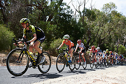 Amanda Spratt (AUS) on the Stirling climb on Stage 3 of 2020 Santos Women's Tour Down Under, a 109.1 km road race from Nairne to Stirling, Australia on January 18, 2020. Photo by Sean Robinson/velofocus.com