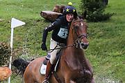 Irmani D09 ridden by Helen Witchell in the Equi-Trek CCI-L4* Cross Country during the Bramham International Horse Trials 2019 at Bramham Park, Bramham, United Kingdom on 8 June 2019.