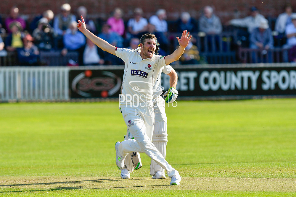 Craig Overton of Somerset appeals for a wicket while bowling during the Specsavers County Champ Div 1 match between Somerset County Cricket Club and Worcestershire County Cricket Club at the Cooper Associates County Ground, Taunton, United Kingdom on 20 April 2018. Picture by Graham Hunt.