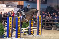 Celis Davy, BEL, Latif II S<br /> Pavo Hengstencompetitie<br /> Azelhof Lier 2020<br /> © Hippo Foto - Dirk Caremans