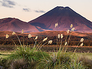 "Mount Ngauruhoe (2291 metres or 7516 feet elevation) last erupted in 1975 in Tongariro National Park, North Island, New Zealand. In 1990 and 1993, UNESCO honored Tongariro National Park as a World Heritage Area and Cultural Landscape. Tongariro National Park served as a location for fictional Mordor and Mount Doom in the ""Lord of the rings"" Motion Pictures. Published 2012 in a double page spread in Happinez magazine, Hamburg, Germany."