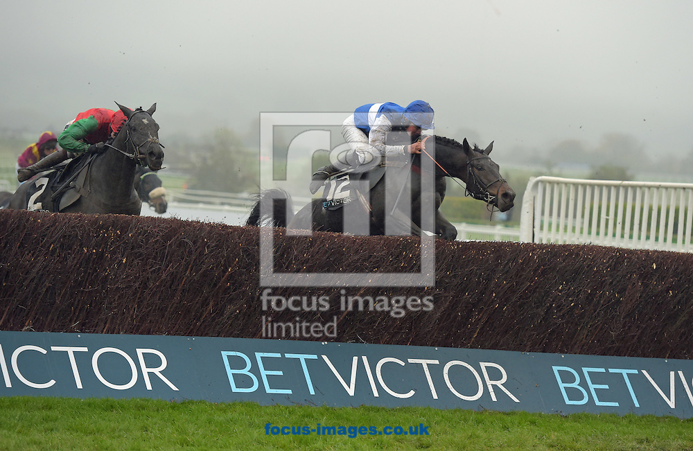 A preview of this weekend's favourites in UK Racing.<br /> Picture by Martin Lynch/Focus Images Ltd 07501333150<br /> 09/12/2016<br /> <br /> Original caption:<br /> Left is TAQUIN DU SEUIL with A Coleman 1st from right  ASO 4th in BetVictor Gold Cup at Cheltenham 12-11-16.