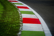September 3-5, 2015 - Italian Grand Prix at Monza: Curb detail