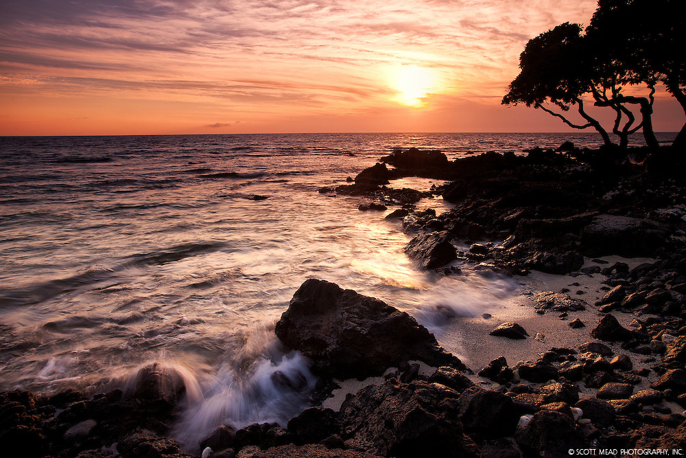 Streaming waves over lava with silhouette tree at sunset, from Waikoloa, Big Island, Hawaii