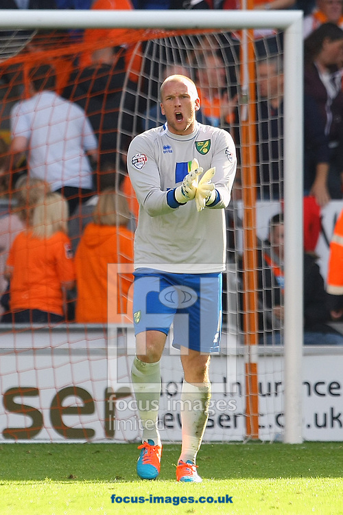 John Ruddy of Norwich berates his defence after his side concede the opening goal of the match during the Sky Bet Championship match at Bloomfield Road, Blackpool<br /> Picture by Paul Chesterton/Focus Images Ltd +44 7904 640267<br /> 27/09/2014