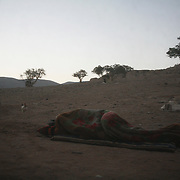 Abdullah is sleeping outside his Bedouin tent. Abdullah's family live about twenty miles from Petra