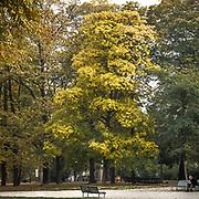 Parco di Porta Venezia a Milano<br /> <br /> Porta Venezia public garden in Milan