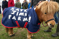 Pictured: Copper, the mini Shetland pony was on hand to support Jim Telfer in his fight to save his farm<br /> <br /> The Scottish Green Party's Andy Wightman, MSP, joined local election candidate Ian Baxter at the proposed site of a new film studio in Edinburgh ahead of the local council elections.<br /> Ger Harley | EEm 17 April 2017