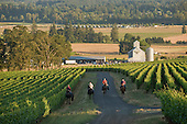 Oregon - Equestrian Wine tours