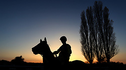 A horse and jockey silhouetted in the parade ring at Southwell Racecourse.
